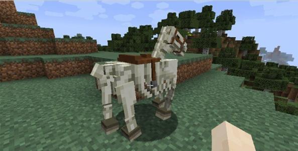 我的世界驴怎么驯服