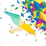 一个奇鸽手机版app