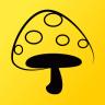 蘑菇丁官方正版